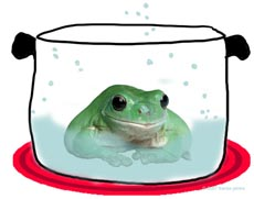 frog photo and drawing by franke james